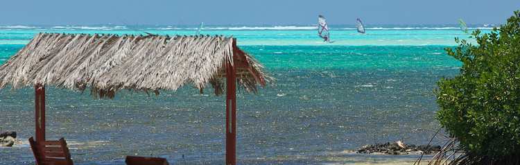 bonaire-windsurf