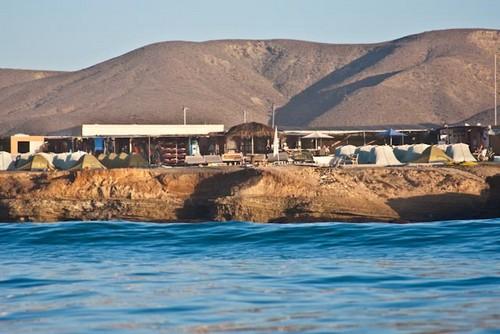 Hotels in punta san carlos  : Campo Punta San Carlos
