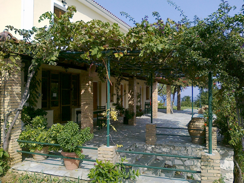 Hotels in zante  : Takis B&B